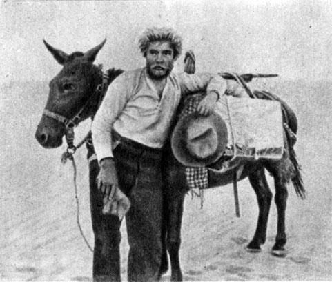 'Алчность'. Реж. Э. Штрогейм. (Мак-Тиг - Г. Гоуленд.) 1924